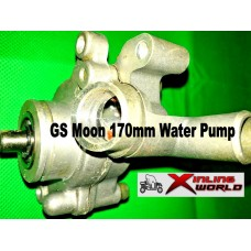 Water Pump 260cc ATV GS Moon