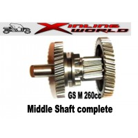 GS Moon Xingyue  Middle Shaft Complete 260cc ATV Buggy in Stock